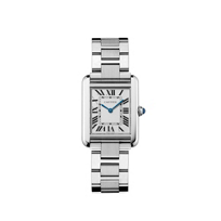 Cartier_Tank_Solo_Steel_Watch,_Small_Model