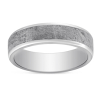Cobalt_Chrome_&_Meteorite_Wedding_Band,_6mm