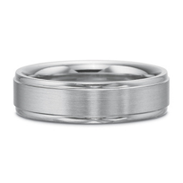Precision_Set_Palladium_Matte_and_Polished_Band,_6mm