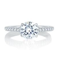a._jaffe_14k_white_gold_diamond_shank_&_basket_ring_mounting,_0.28aptw