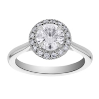 18k_white_gold_kalahari_dream_diamond_halo_ring