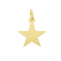 Rembrandt_14K_Yellow_Gold_Star_Charm