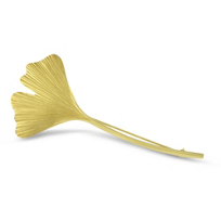 14K_Yellow_Gold_Gingko_Leaf_Pin