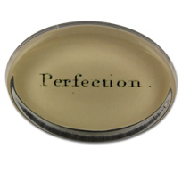 John_Derian_Perfection_Oval_Paperweight