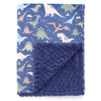 baby_laundry_dino_baby_blanket
