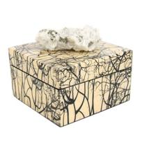rox_by_cj_designs_branches_square_box