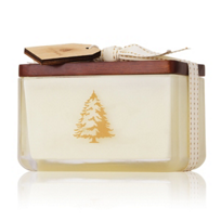 Thymes_Frasier_Fir_Northwoods_2-Wick_Candle,_14_oz