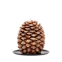 Aspen_Bay_Brown_Tin_Roof_Pinecone_Candle