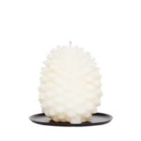Aspen_Bay_Holiday_Magic_Tin_Roof_Pinecone_Candle