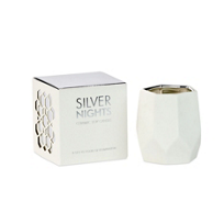 D.L._&_Co_Silver_Nights_Small_Ceramic_White_Candle