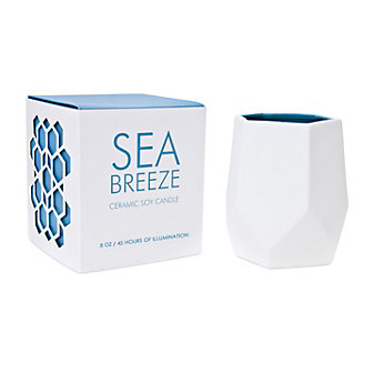 D.L. & Co. Sea Breeze Small 8 Oz. Ceramic Candle