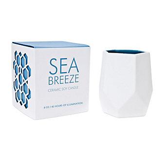 D.L. & Co. Sea Breeze Small 8 Oz. Ceramic Candle