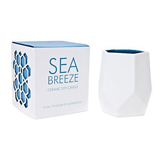 D.L. & Co. Large 14 Oz. Sea Breeze Ceramic Candle