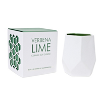 D.L._&_Co._Verbena_Lime_8_Oz._Ceramic_Candle