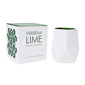 D.L. & Co. Large Verbena Lime Ceramic Candle