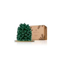 thymes_frasier_fir_northwoods_pinecone_large_candle