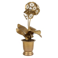 tommy_mitchell_standard_double_auricula_gilded_decoration_fleur