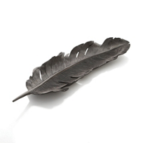 Michael_Aram_Feather_Tray_Black_Nickelplate