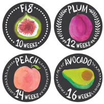 Lucy_Darling_Growing_Garden_Belly_Stickers