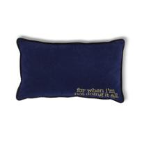 8_Oak_Lane_Doing_it_All_Velvet_Blue_Pillow