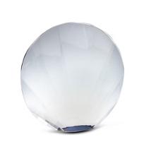 lustig_optical_crystal_shell