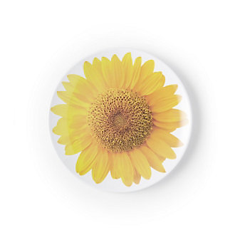 Kate Spade Patio Floral Melamine Accent Plate