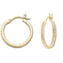 Swarovski_Somerset_Hoop_Pierced_Earrings_GOS