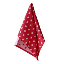 casafina_red_dots_towel