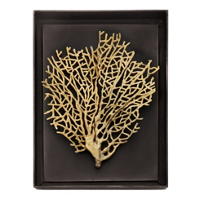 MICHAEL_ARAM_CORAL_SHADOW_BOX
