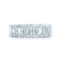 kwiat_platinum_ashoka_diamond_north_south_eternity_band